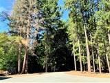 2793 Pleasant Creek Road - Photo 38