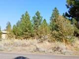 0 Plehn Pines Drive - Photo 3