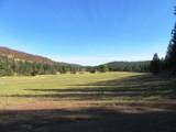 552070 Anderson Ranch Road - Photo 61