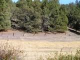 552070 Anderson Ranch Road - Photo 76