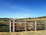 552070 Anderson Ranch Road - Photo 83