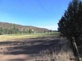552070 Anderson Ranch Road - Photo 84