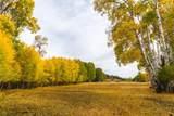51197 Sphar Ranch Road - Photo 10