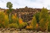 51197 Sphar Ranch Road - Photo 11