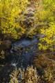 51197 Sphar Ranch Road - Photo 12