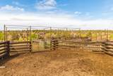 51197 Sphar Ranch Road - Photo 19