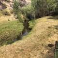 51197 Sphar Ranch Road - Photo 30