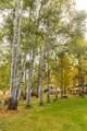51197 Sphar Ranch Road - Photo 5