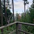 0 Tolman Creek Tl1000 Road - Photo 1