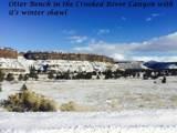 11218 Horny Hollow Trail - Photo 17