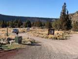 11218 Horny Hollow Trail - Photo 6