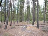 19 Bunny Butte - Photo 4