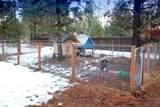 15101 Yellow Pine Loop - Photo 16