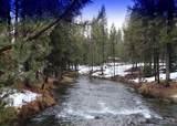 15101 Yellow Pine Loop - Photo 19