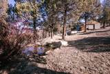 70090 Mckenzie Canyon Road - Photo 23