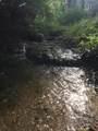3851 Anderson Creek Road - Photo 59
