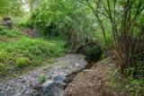 1617 Wards Creek Road - Photo 4