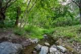 1617 Wards Creek Road - Photo 6