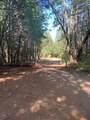 NS Limpy Creek Road - Photo 3