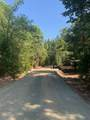 NS Limpy Creek Road - Photo 8