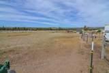 5333 Sioux Loop - Photo 48