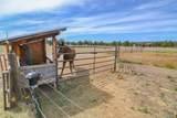 5333 Sioux Loop - Photo 55