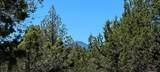 17740 Mountain View Road - Photo 4