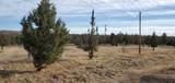 10101 View Top Lane - Photo 33