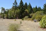 550 Thompson Creek Road - Photo 6