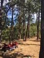 10503 Antelope Road - Photo 14