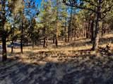 1790 Wild Rye Circle - Photo 12