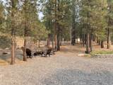 14720 Longleaf Pine - Photo 43
