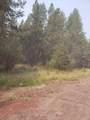 16434 Antelope Drive - Photo 2