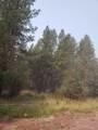 16434 Antelope Drive - Photo 3