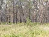 16434 Antelope Drive - Photo 4