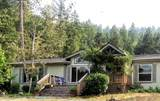 1715 Limpy Creek Road Road - Photo 1