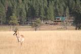 21762 Badger Creek Road - Photo 19
