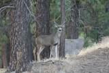 21762 Badger Creek Road - Photo 22