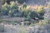 21762 Badger Creek Road - Photo 23