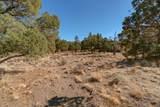 1012 Trail Creek Drive - Photo 6