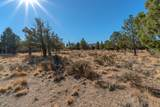 1012 Trail Creek Drive - Photo 8