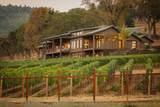 15 Vineyard View Circle - Photo 46