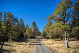 1999 Crowfoot Road - Photo 37