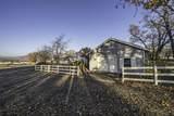 6633 Rapp Lane - Photo 48