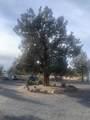 15535 Yurok Road - Photo 24