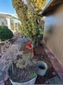 5053-5056 Seven Oaks Road - Photo 25