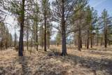 16140 Fox Ridge Circle - Photo 17
