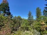 700 Seclusion Loop - Photo 25