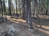 0-TM/TL 2409-030CD-0 Bonner Lane - Photo 1