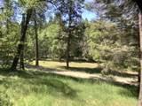 14324 Evans Creek Road - Photo 7
